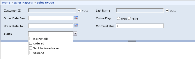 SSRS parameters as seen from Report Server